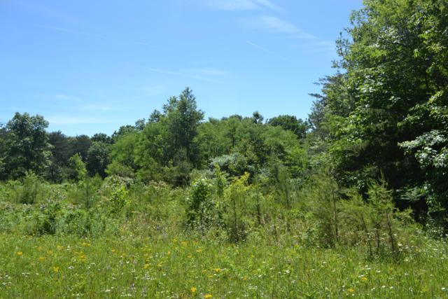 14ac Raccoon Ridge Rd., Spring City, TN 37381 (MLS #1300292) :: Chattanooga Property Shop