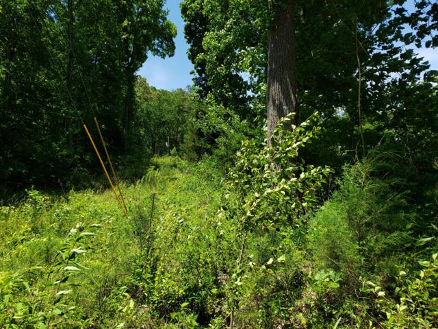 0 Mountain Valley Dr W, 60, Dunlap, TN 37327 (MLS #1300295) :: Chattanooga Property Shop