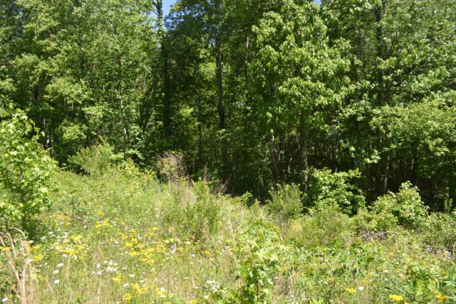 15ac Raccoon Ridge Rd., Spring City, TN 37381 (MLS #1300296) :: Chattanooga Property Shop