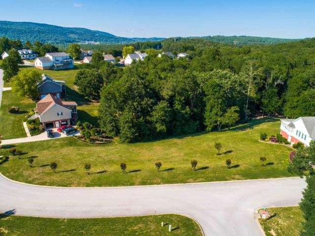 391 Classic Dr, Soddy Daisy, TN 37379 (MLS #1300502) :: Keller Williams Realty | Barry and Diane Evans - The Evans Group