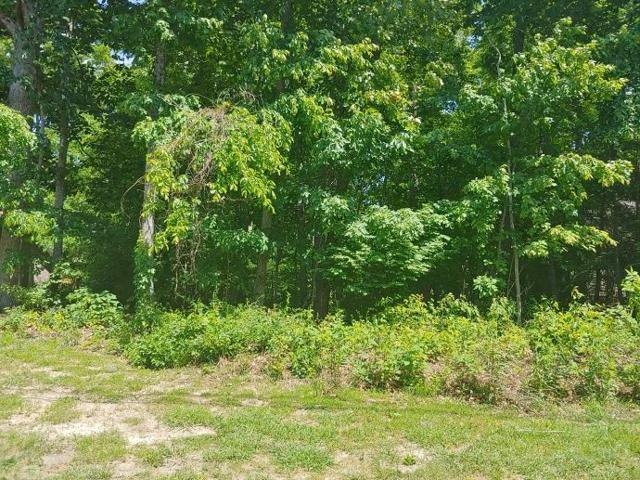 323 Lakeview Dr, Crossville, TN 38558 (MLS #1300511) :: Chattanooga Property Shop