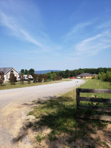 29 Fredonia Farm Rd, Dunlap, TN 37327 (MLS #1301047) :: Chattanooga Property Shop
