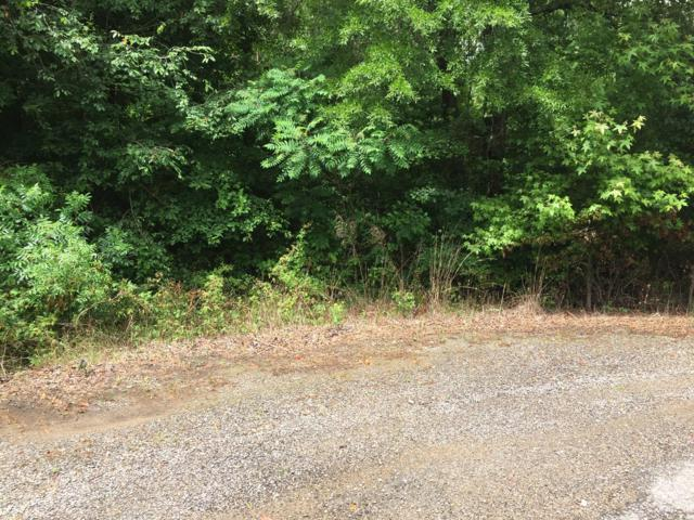0 County Rd 814, Flat Rock, AL 35966 (MLS #1301163) :: Keller Williams Realty | Barry and Diane Evans - The Evans Group