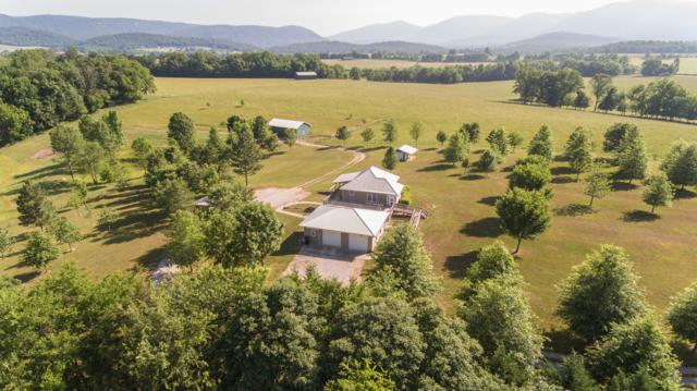 11405 Uppper E. Valley Rd, Pikeville, TN 37367 (MLS #1301425) :: The Edrington Team