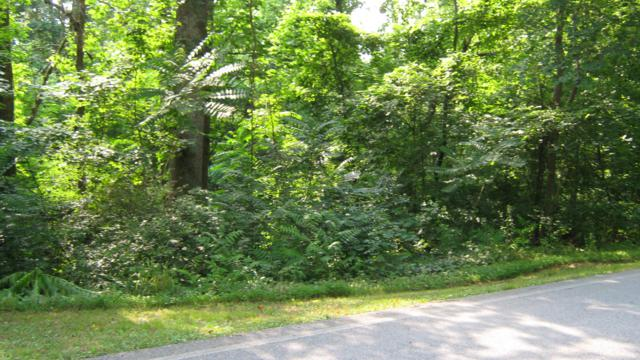 0 Potts Road, Ringgold, GA 30736 (MLS #1301435) :: Keller Williams Realty | Barry and Diane Evans - The Evans Group