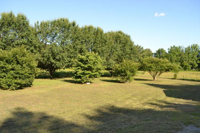 2350 Ketner Mill Rd, Whitwell, TN 37397 (MLS #1301451) :: The Edrington Team