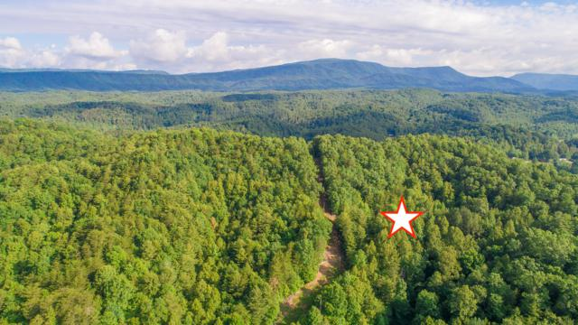 388 Greasy Creek Rd, Reliance, TN 37369 (MLS #1301601) :: Keller Williams Realty | Barry and Diane Evans - The Evans Group