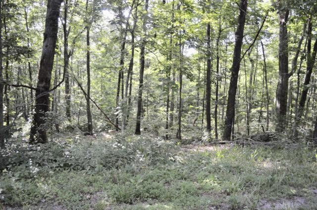 Lot 7 Hwy 157 & Lookout Dr Dr #7, Rising Fawn, GA 30738 (MLS #1301900) :: The Mark Hite Team