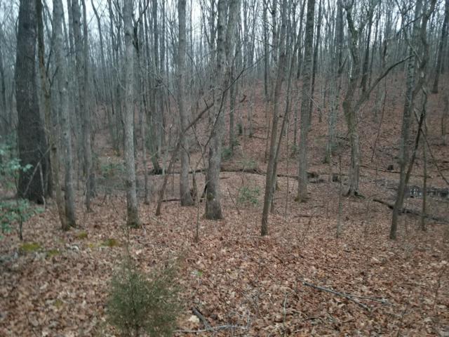 1117 Deer Run Road, Altamont, TN 37301 (MLS #1302624) :: Keller Williams Realty | Barry and Diane Evans - The Evans Group