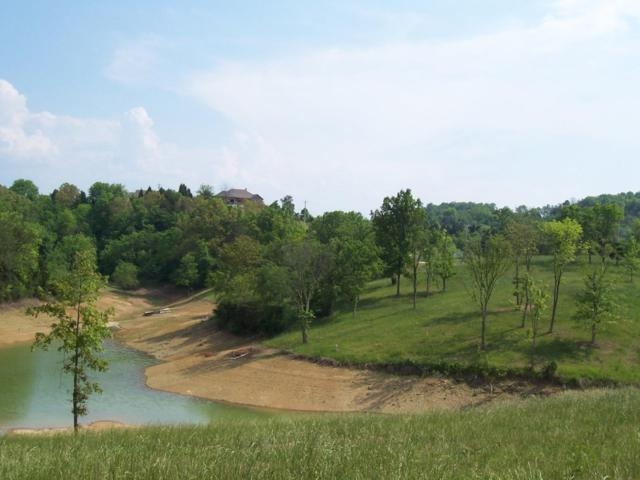 Lot 21 Ferry Hill Rd, Dandridge, TN 37725 (MLS #1303190) :: Keller Williams Realty | Barry and Diane Evans - The Evans Group