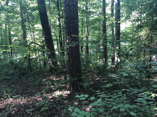 0 River Canyon Rd 1 & 2A, Chattanooga, TN 37405 (MLS #1303543) :: The Robinson Team