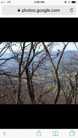 00 Big Fork Rd, Chattanooga, TN 37405 (MLS #1304098) :: Chattanooga Property Shop