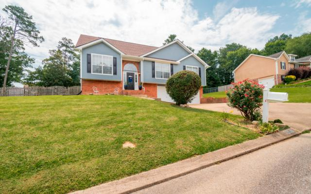 6220 Hunter Valley Rd, Ooltewah, TN 37363 (MLS #1304264) :: The Jooma Team