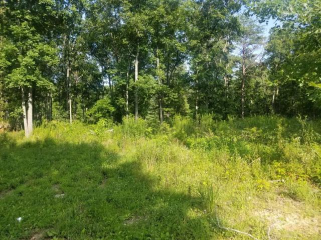 50+ Acres Mcnabb Rd, Evensville, TN 37332 (MLS #1304418) :: The Mark Hite Team