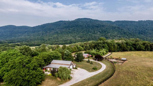 9988 Upper East Valley Rd, Pikeville, TN 37367 (MLS #1304887) :: The Edrington Team