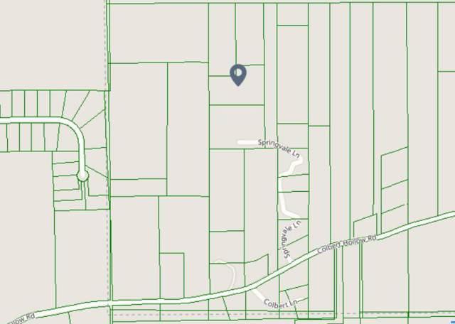 214 Springvale Ln, Rock Spring, GA 30739 (MLS #1306509) :: Keller Williams Realty | Barry and Diane Evans - The Evans Group