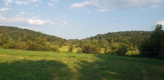 15 Acres No Pone Road, Georgetown, TN 37336 (MLS #1307038) :: Keller Williams Realty | Barry and Diane Evans - The Evans Group