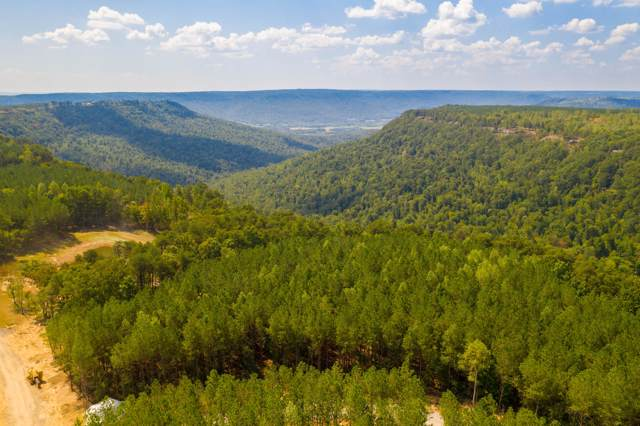 Lot 37 Pine Knot Pass #37, Jasper, TN 37347 (MLS #1307055) :: Keller Williams Realty | Barry and Diane Evans - The Evans Group