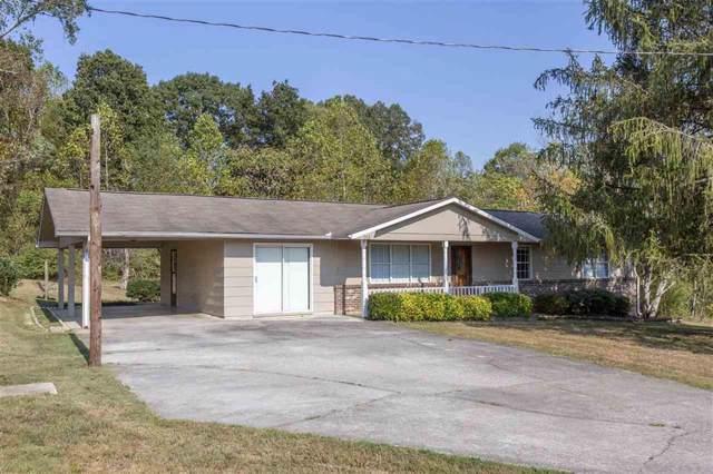 242 Lake Hills Cir, Spring City, TN 37381 (MLS #1307792) :: The Edrington Team