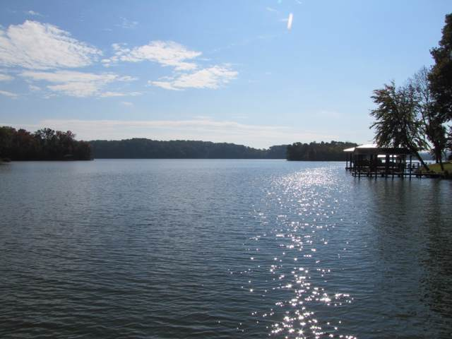 1049 Scenic Lakeview Dr, Spring City, TN 37381 (MLS #1308729) :: The Mark Hite Team