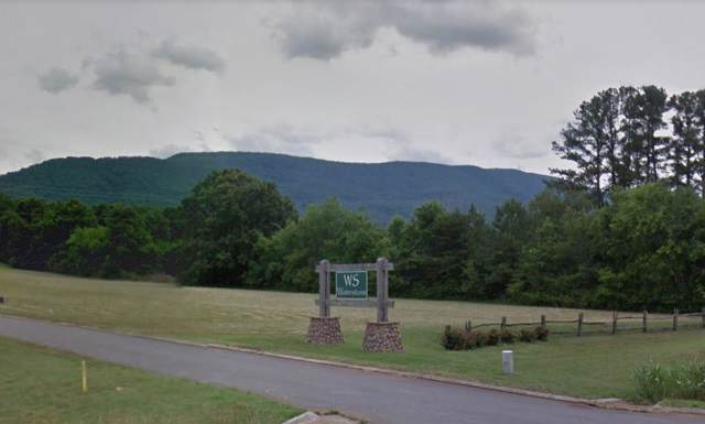155 Waterstone Dr, Benton, TN 37307 (MLS #1308879) :: Keller Williams Realty | Barry and Diane Evans - The Evans Group
