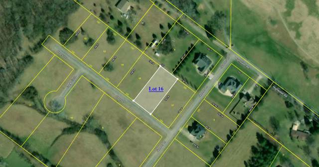 Lot 16 Casey Ln, Dayton, TN 37321 (MLS #1309001) :: Keller Williams Realty | Barry and Diane Evans - The Evans Group