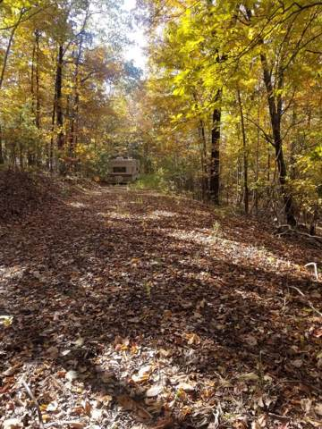 8.62 Ac Tammy Tr, Spring City, TN 37381 (MLS #1309454) :: The Mark Hite Team