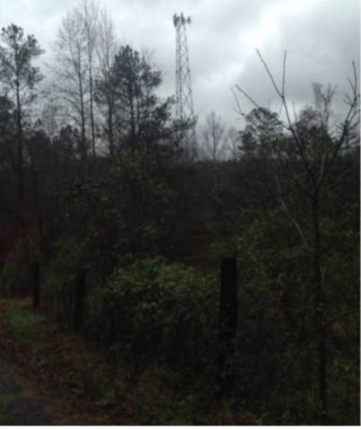 2335 Coley Farm Rd, Rocky Face, GA 30740 (MLS #1309617) :: The Jooma Team