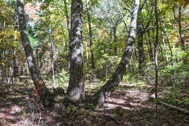 0 Valley View Dr #33, Altamont, TN 37301 (MLS #1309690) :: Grace Frank Group