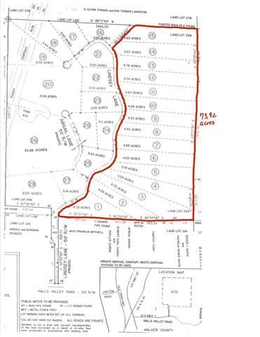 00 Halls Valley Rd, Trion, GA 30753 (MLS #1310067) :: Grace Frank Group