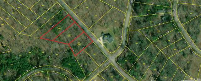 Lot 258 Chestnut Dr, Spring City, TN 37381 (MLS #1310462) :: Austin Sizemore Team