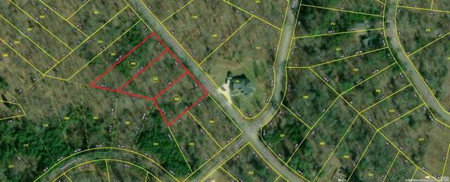 Lot 260 Chestnut Dr, Spring City, TN 37381 (MLS #1310467) :: Austin Sizemore Team