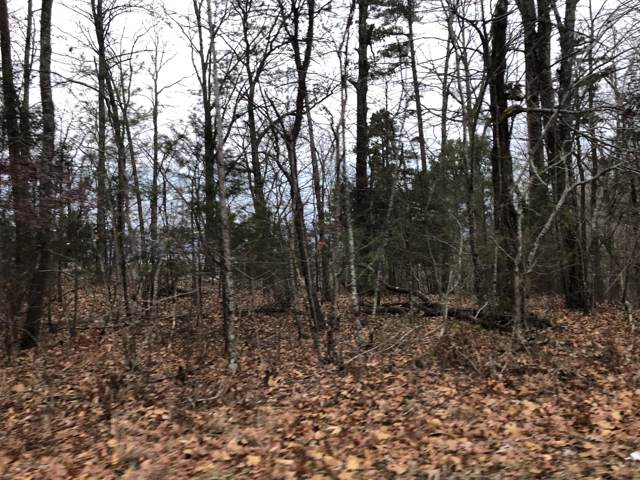 0 Big Springs Gap Rd, Pikeville, TN 37367 (MLS #1310475) :: The Robinson Team