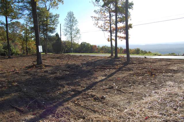 1013 Sawyer Cemetery Rd, Signal Mountain, TN 37377 (MLS #1310560) :: Chattanooga Property Shop