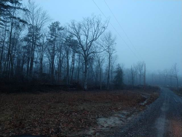 3714 Barker Camp Rd, Dunlap, TN 37327 (MLS #1310772) :: Grace Frank Group