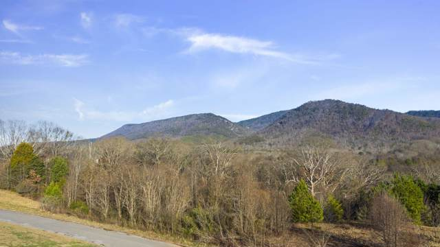 176 Waterstone Dr, Benton, TN 37307 (MLS #1310900) :: Grace Frank Group