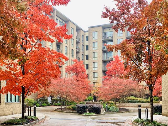 200 Manufacturers Rd Apt 308, Chattanooga, TN 37405 (MLS #1311352) :: Chattanooga Property Shop