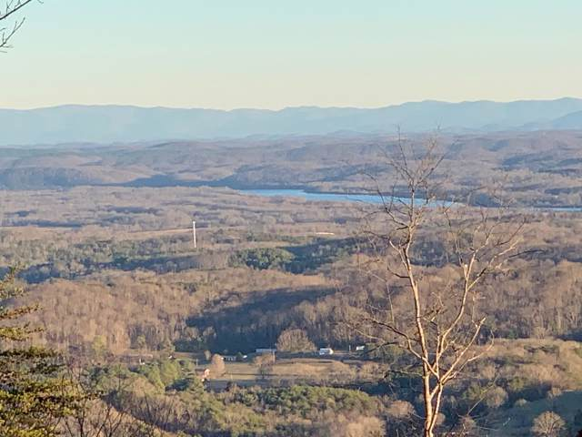 370 Duckwood Ln #15, Evensville, TN 37332 (MLS #1311426) :: Keller Williams Realty | Barry and Diane Evans - The Evans Group