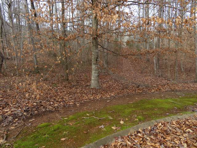 66 Golf Villa Dr, Dunlap, TN 37327 (MLS #1312242) :: Chattanooga Property Shop