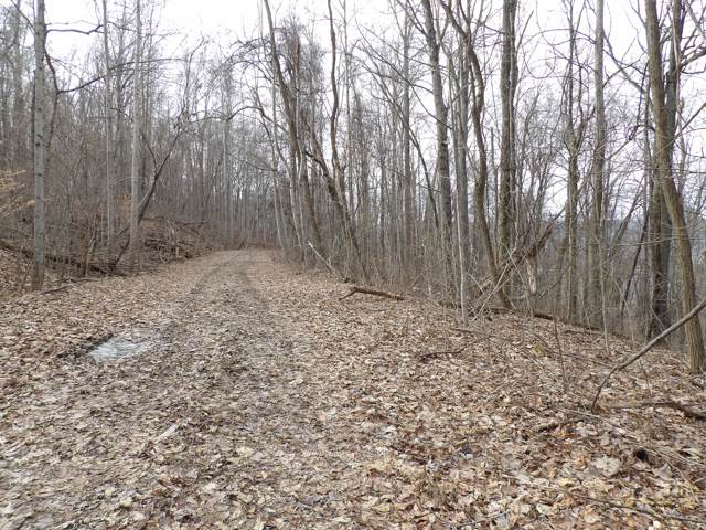 04 Fox Ridge Rd #84, Pikeville, TN 37367 (MLS #1312291) :: Chattanooga Property Shop