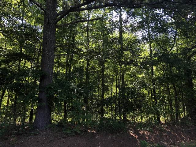 00 County Rd 14, Flat Rock, AL 35966 (MLS #1312534) :: Keller Williams Realty | Barry and Diane Evans - The Evans Group