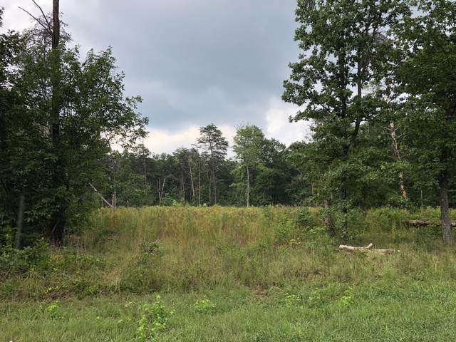 91 County Rd 9101, Higdon, AL 35979 (MLS #1313210) :: Keller Williams Realty | Barry and Diane Evans - The Evans Group