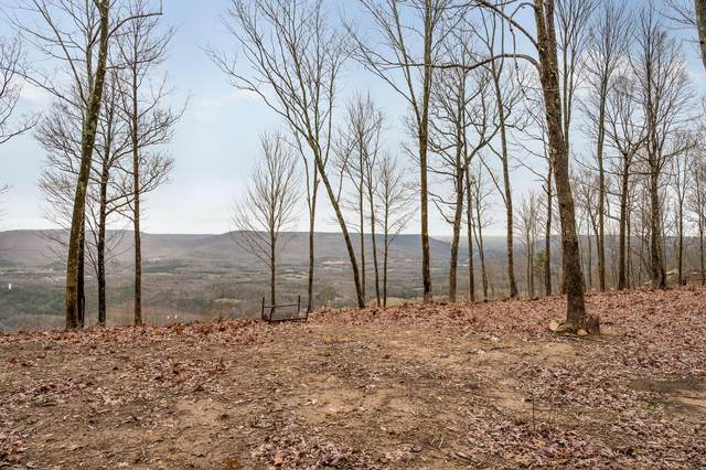 6700 Old State Rd, Cloudland, GA 30731 (MLS #1313357) :: Austin Sizemore Team