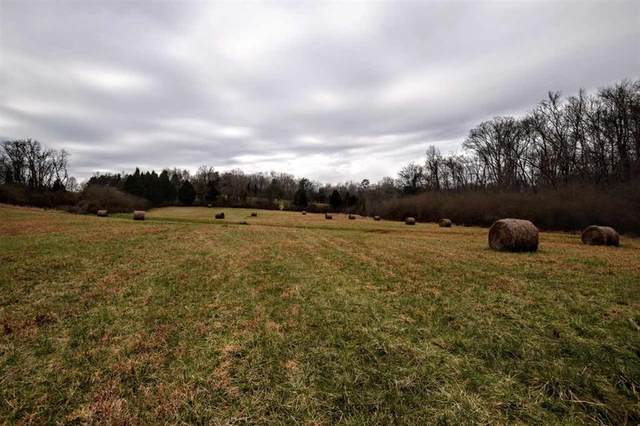 73.16 Ac Toestring Valley Rd, Spring City, TN 37381 (MLS #1313505) :: Austin Sizemore Team