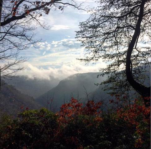 2312 Little Bend Rd, Signal Mountain, TN 37377 (MLS #1313579) :: The Robinson Team