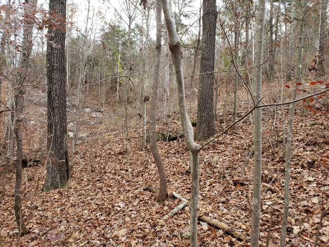 Lot Tn-156, South Pittsburg, TN 37380 (MLS #1313632) :: Keller Williams Realty | Barry and Diane Evans - The Evans Group