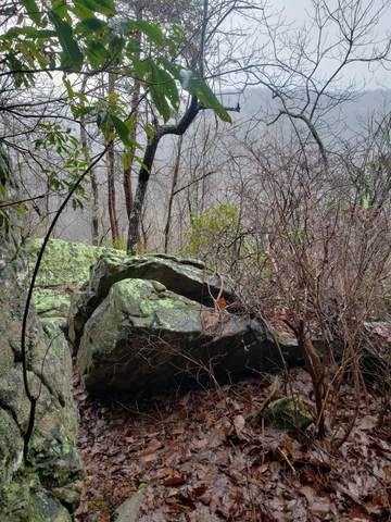 0 S Bridal Veil #5, Monteagle, TN 37356 (MLS #1315333) :: EXIT Realty Scenic Group