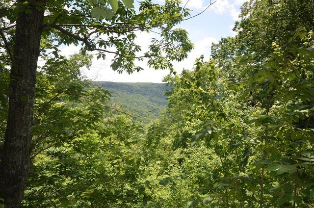 0 S Bridal Veil #6, Monteagle, TN 37356 (MLS #1315334) :: EXIT Realty Scenic Group