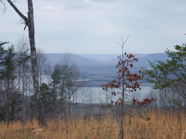 107 Chesadu Cir, South Pittsburg, TN 37380 (MLS #1315674) :: Chattanooga Property Shop