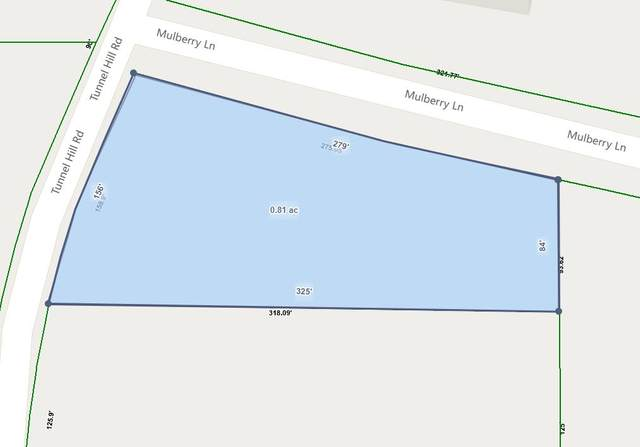 0 Tunnel Hill Rd, Tunnel Hill, GA 30755 (MLS #1315914) :: Chattanooga Property Shop